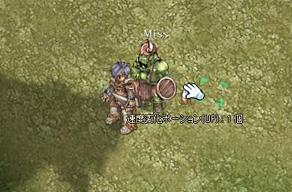 item_ss4_2.jpg
